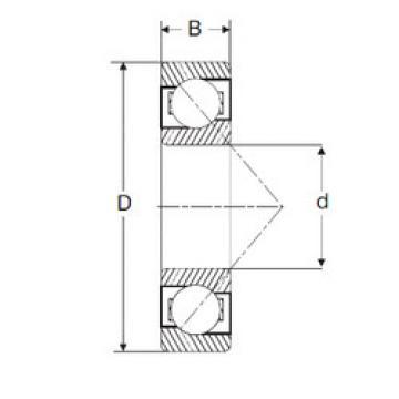Rodamiento LJT 3.3/4 SIGMA
